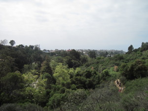 WALK WITH ME: Pacific Palisades