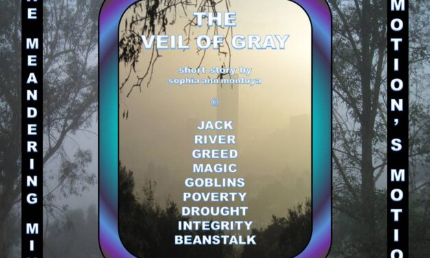 THE MEANDERING MIND: THE VEIL OF GRAY